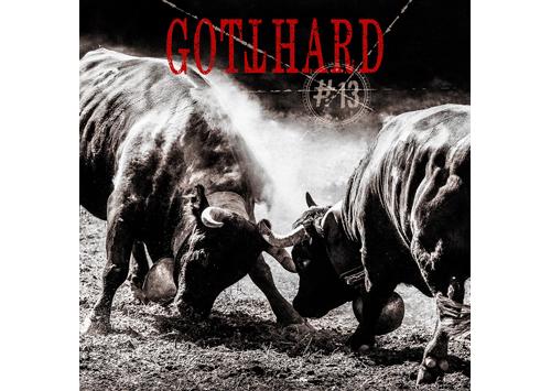 GOTTHARD 13